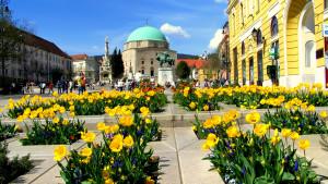 vakantieregio's hongarije romeins pannonia 06
