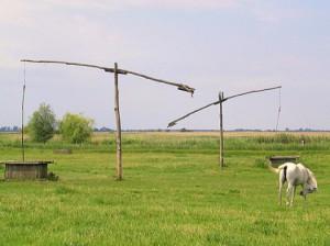 poestaboerderij loslopende paarden waterputten