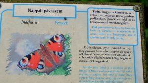 zirc balaton hoogland hongarije 05