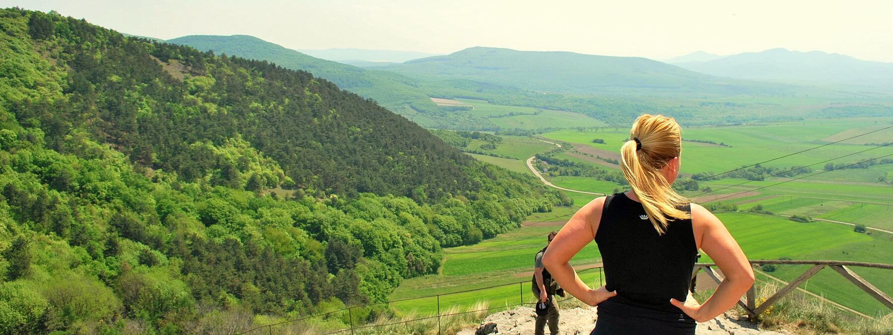 landschap hongarije homepage