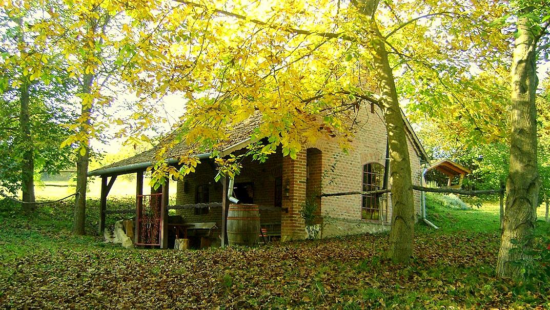 vakantiehuis zöld álom ház hegyhátmároc 01